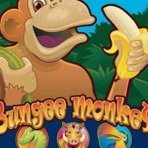 Novoline-bungee-monkey-logo