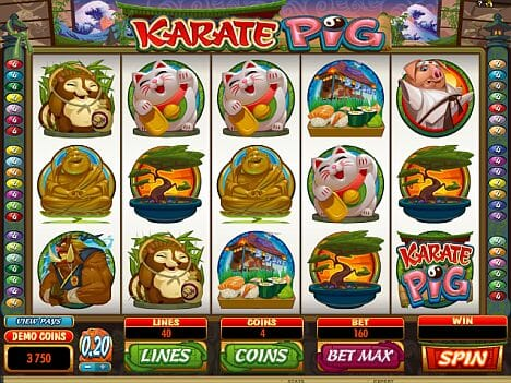 Karate Pig