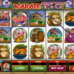 Karate Pig Gewinn