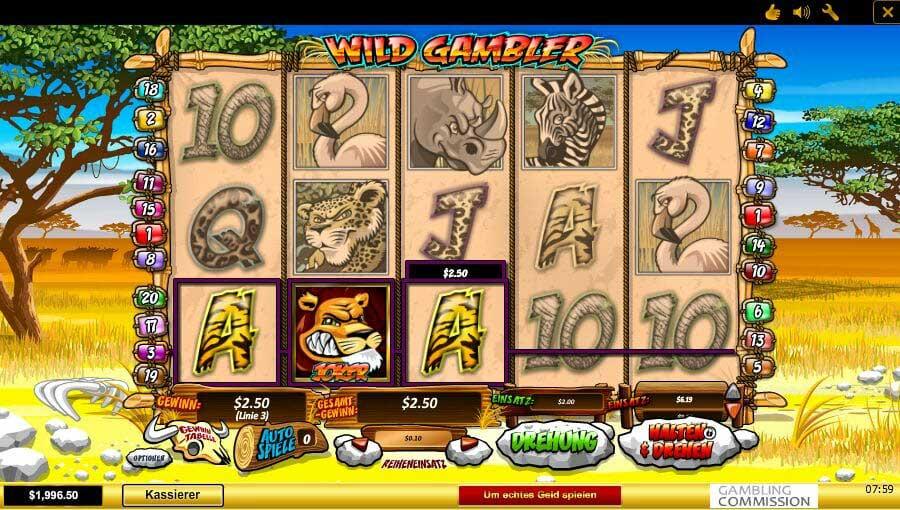 Wild Gambler Gewinn