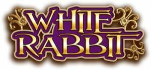 White Rabbit Schriftzug